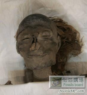 论区 新加图 埃及考古大发现 女法老王木乃伊身分获确认图片
