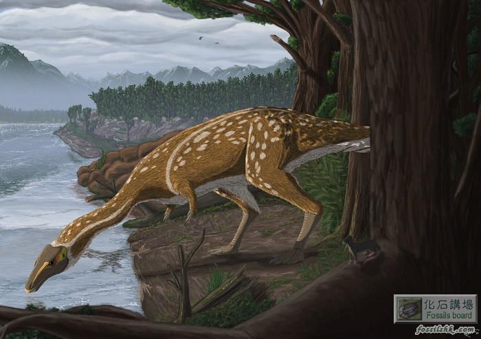 澳洲發現長頸部無牙齒的獸腳類恐龍
