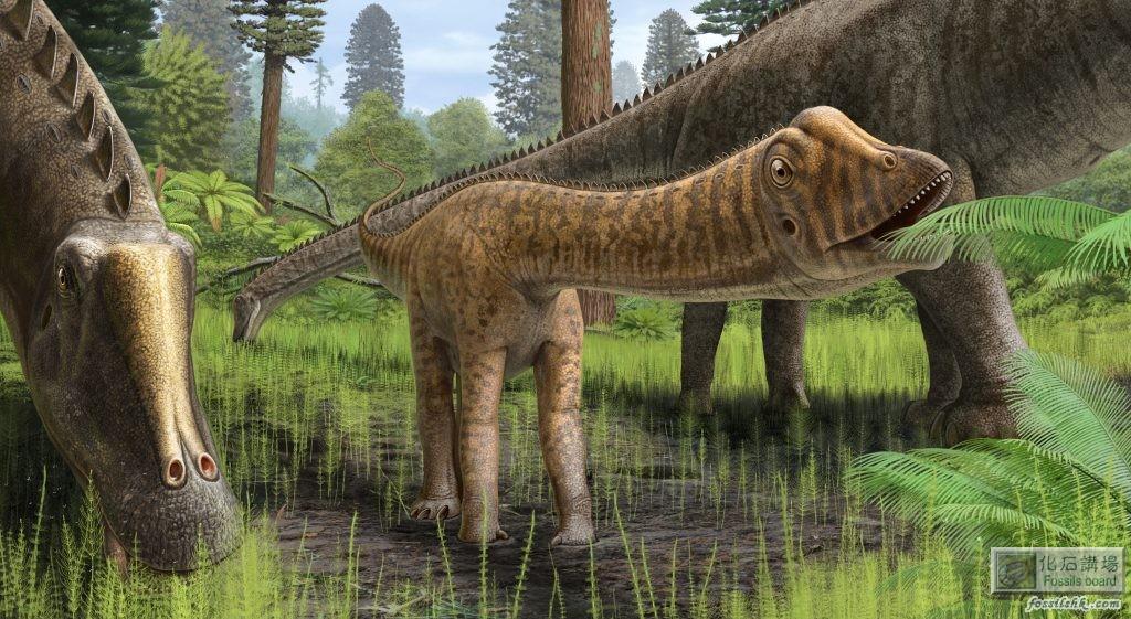 美國發現幼年長頸龍化石並命名為Andrew