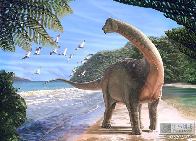新種蜥腳類恐龍化石於埃及撒哈拉沙漠出土
