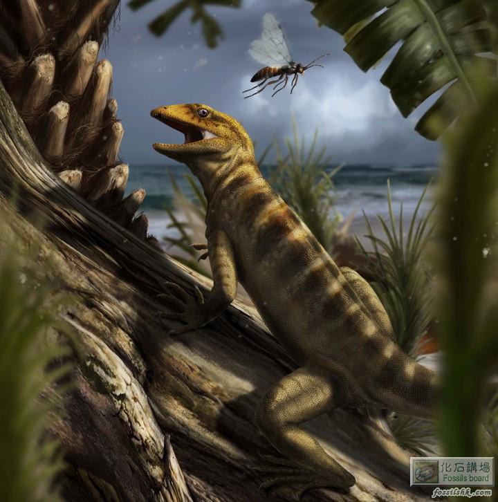 意大利發現2.4億年前最古老的蜥蜴化石