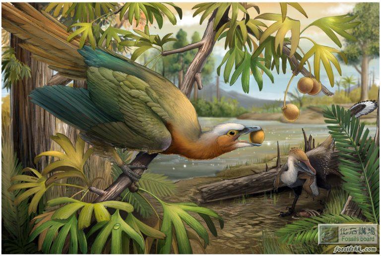 恐龍滅絕鳥類存活 關鍵是牙齒