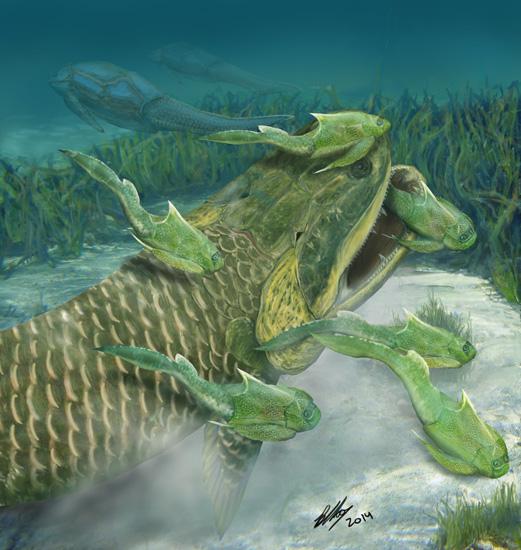 三億七千萬年前寧夏古魚揭示魚類登陸進程的新疑團