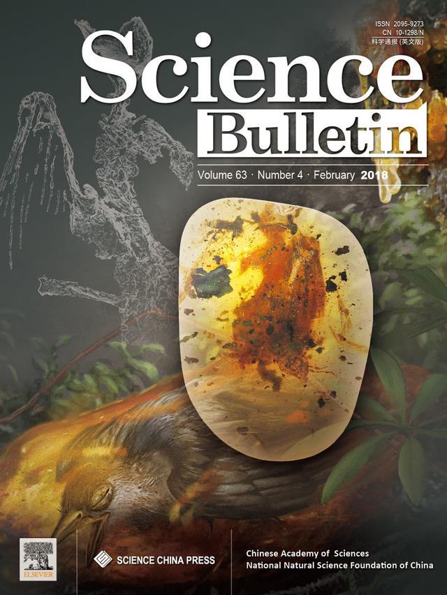 一億年前的琥珀裏發現了一隻幾乎完整的小鳥