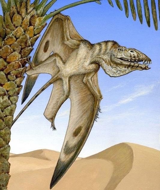 美國猶他州發現三疊紀新種翼龍化石 雙翼展開1.5公尺