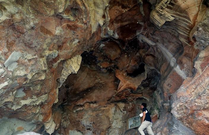 馬來西亞四面佛洞發現保存良好的老虎化石