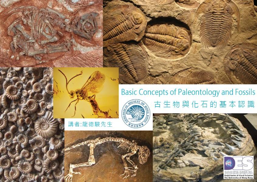 公開講座: 古生物與化石的基本認識 (2019年3月21日香港大學)