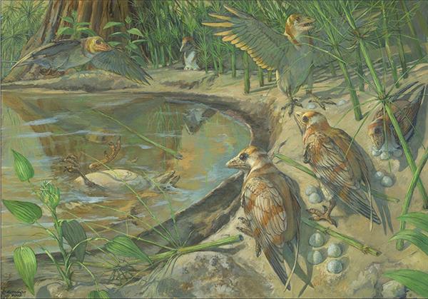 中國首次發現體內保存蛋殼的中生代鳥類化石