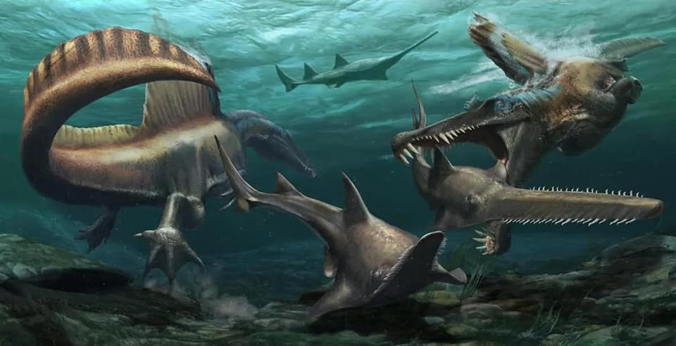 發現完整恐龍尾巴 佐證棘龍是一種水生恐龍
